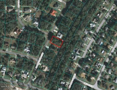 Ocala Residential Lots & Land For Sale: SW 42 Terrace Road