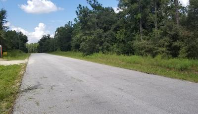 Dunnellon Residential Lots & Land For Sale: SW 202nd Court #Lot 10