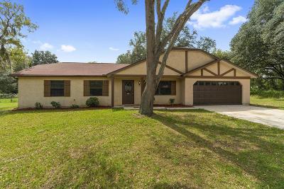 Ocala Single Family Home For Sale: 303 Bahia Circle