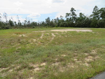 Ocala Residential Lots & Land For Sale: SW 29th Terrace Road
