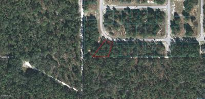 Ocala Residential Lots & Land For Sale: SW 128th Place