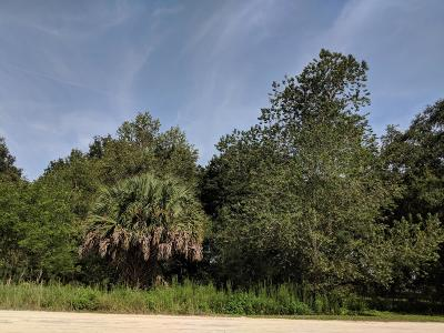 Ocala Residential Lots & Land For Sale: SW 150th Court