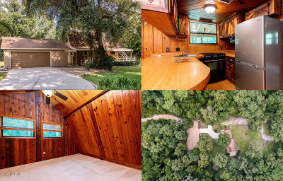 Ocala Single Family Home For Sale: 47 W Lake View Drive