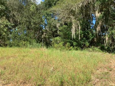 Citrus County Residential Lots & Land For Sale: 11867 N Elkcam Boulevard