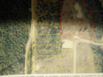 Pace Residential Lots & Land For Sale: S Wallace Lake Rd