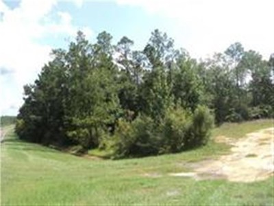 Molino Residential Lots & Land For Sale: S 3370 Century Blvd