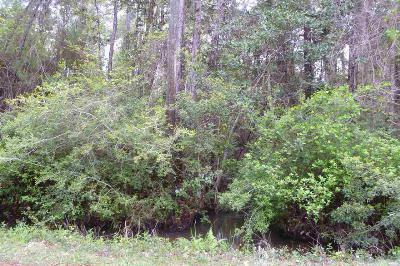 Gulf Breeze Residential Lots & Land For Sale: 1831 Fuller Rd