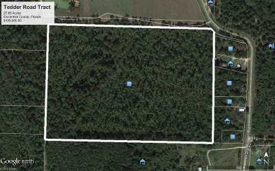 Century Residential Lots & Land For Sale: 1100 Tedder Rd