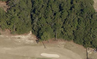 Milton Residential Lots & Land For Sale: Lot 00 Cedar Tree Dr