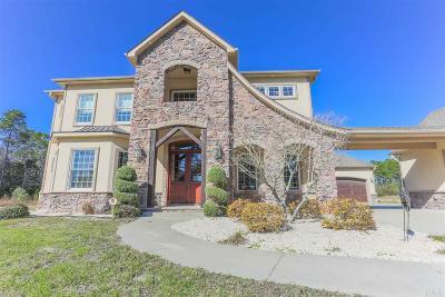 Pensacola Single Family Home For Sale: 12170 Havburg Dr