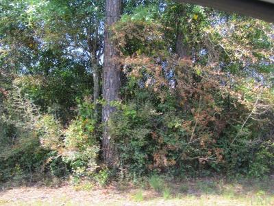 Milton Residential Lots & Land For Sale: Pat Brown Rd