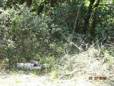 Gulf Breeze Residential Lots & Land For Sale: Lot 4 Hickory Shores Blvd
