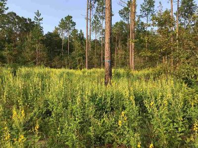 Jay Residential Lots & Land For Sale: 6752 Camp Henderson Rd