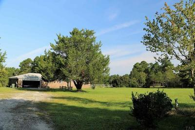 Pensacola Single Family Home For Sale: 10040 North Loop Rd
