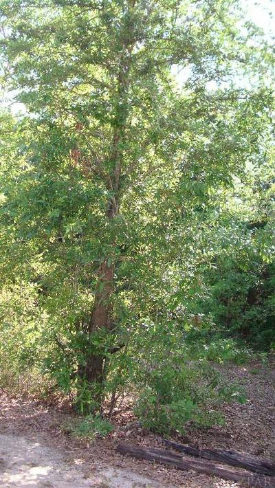 Pace Residential Lots & Land For Sale: 5216 Crystal Creek Dr