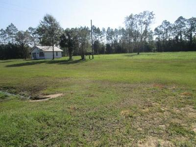 Pensacola Residential Lots & Land For Sale: 11601 Mobile Hwy