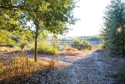 Pensacola Residential Lots & Land For Sale: 16201 Innerarity Pt Rd