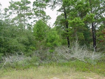 Gulf Breeze Residential Lots & Land For Sale: Pecos Pass