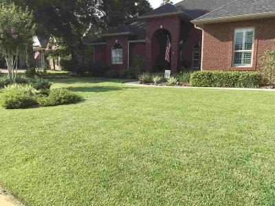 Pensacola Single Family Home For Sale: 8554 Foxtail Loop
