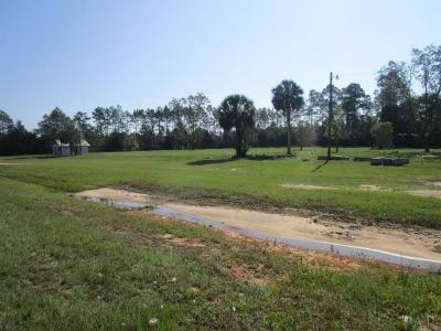 Residential Lots & Land For Sale: 11601 Mobile Hwy