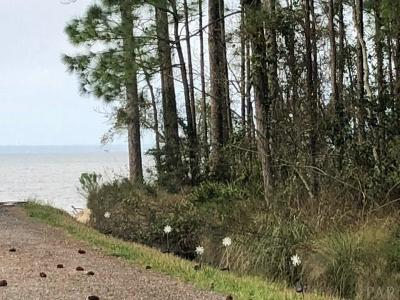 Perdido Key Residential Lots & Land For Sale: Ono Ave