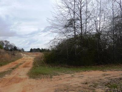 Century Residential Lots & Land For Sale: N 6500 Blk Pine Barren Rd