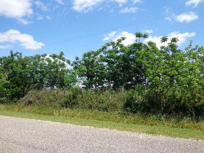 Jay Residential Lots & Land For Sale: Pine Level Church Rd
