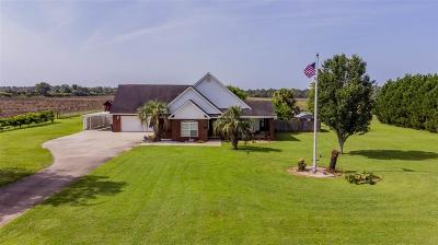 Pace Single Family Home For Sale: 2855 Ten Mile Rd