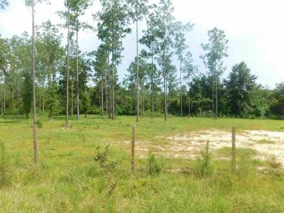 Pace Residential Lots & Land For Sale: Lot 19-A Ten Mile Rd