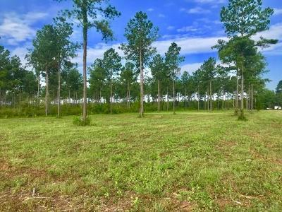 Jay Residential Lots & Land For Sale: Chumuckla Hwy Rd 197