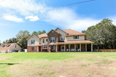 Pensacola Single Family Home For Sale: 9717 Mobile Hwy