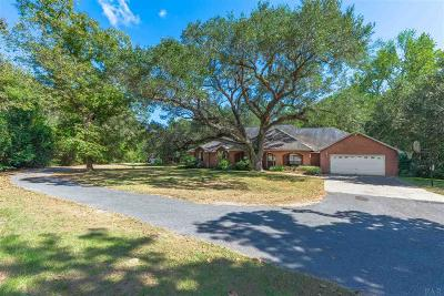 Pensacola Single Family Home For Sale: 10540 Chemstrand Rd