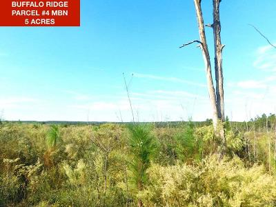 Pace Residential Lots & Land For Sale: Lot 4 Mbn Molino Bridge Rd