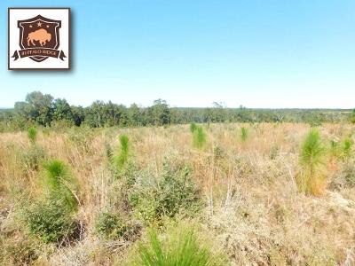 Pace Residential Lots & Land For Sale: Lot 9 Mbn Molino Bridge Rd
