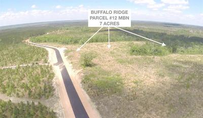 Pace Residential Lots & Land For Sale: Lot 12 Mbn Molino Bridge Rd