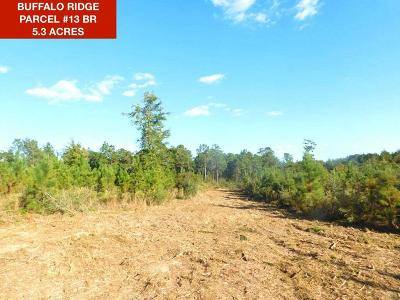 Pace Residential Lots & Land For Sale: Lot 13 Br Buffalo Mill Creek Rd