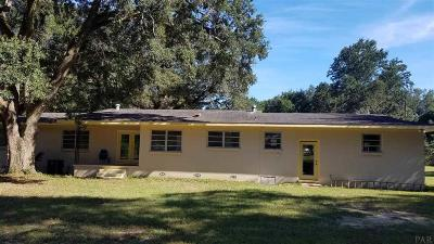 Pensacola Single Family Home For Sale: 8291 Briese Ln