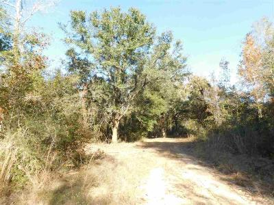 Pace Residential Lots & Land For Sale: Lot 5s Ten Mile Rd