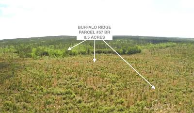 Pace Residential Lots & Land For Sale: Lot 57 Br Buffalo Mill Creek Rd