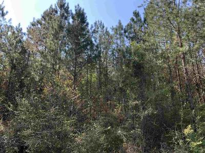 Century Residential Lots & Land For Sale: Hwy 168