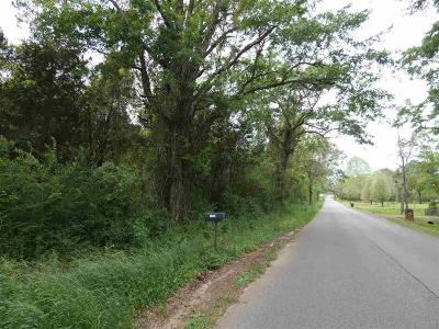 Molino Residential Lots & Land For Sale: 1600 Bet Raines Rd