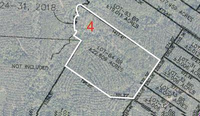 Pace Residential Lots & Land For Sale: Lot 84 Br Crown Pass Dr
