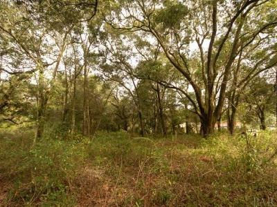 Pensacola Residential Lots & Land For Sale: 3000 Parazine St