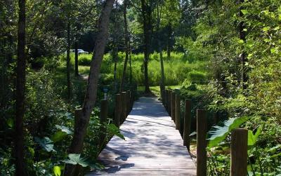 Pensacola Residential Lots & Land For Sale: 1144 Ellyson Dr