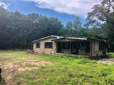 Pensacola Single Family Home For Sale: 4088 Hwy 297 A