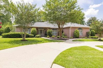 Escambia County Single Family Home For Sale: 9085 Ashville Dr