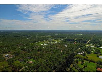 Fellsmere FL Residential Lots & Land For Sale: $129,000