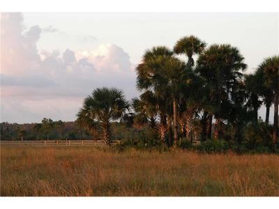 Vero Beach Residential Lots & Land For Sale: 21555 Sr 60