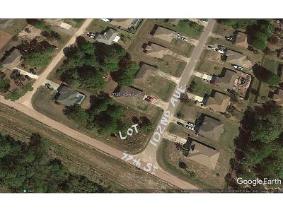 Residential Lots & Land For Sale: 102nd Avenue