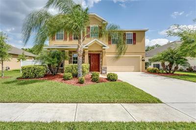 Sebastian Single Family Home For Sale: 143 Stony Point Drive